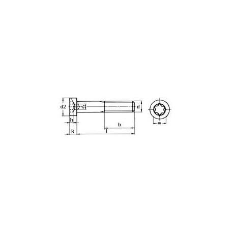 Zylinderschrauben mit TX-Antrieb und niedrigem Kopf, ISO 14580, A2, M4x30
