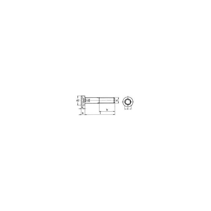 14580-2-4*30, TX20 M4X30, Zylinderschrauben mit TX-Antrieb und niedrigem Kopf
